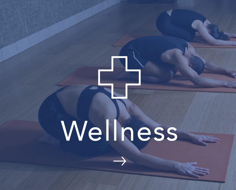 Wellness Expertise Decibel Blue